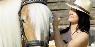 23-pferde-fellpflege-mit-kokosoel